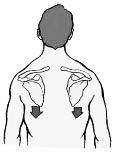 Adem 5 seconden uit – en laat daarbij je schouders zo diep mogelijk zakken.